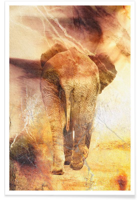 Elefanten, Loop -Poster