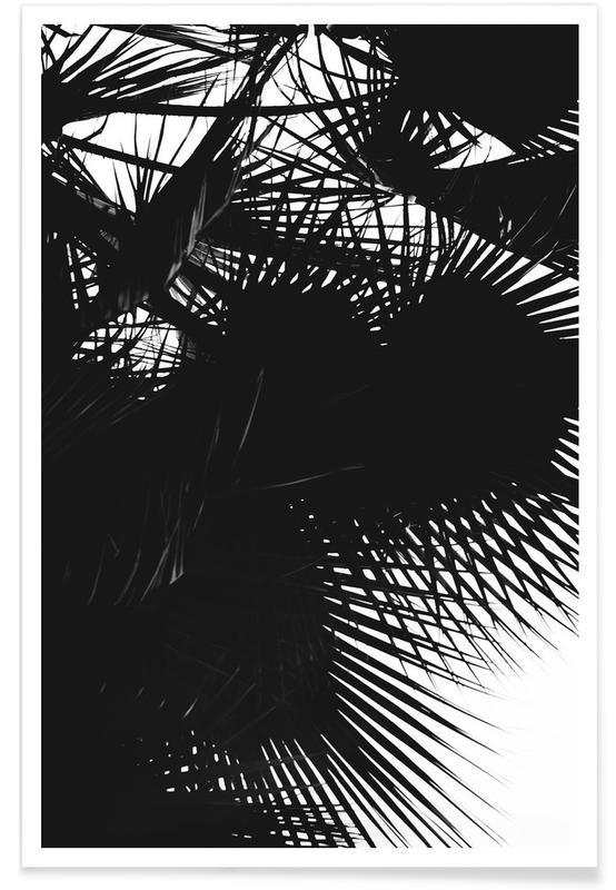 Noir & blanc, Black Palm affiche