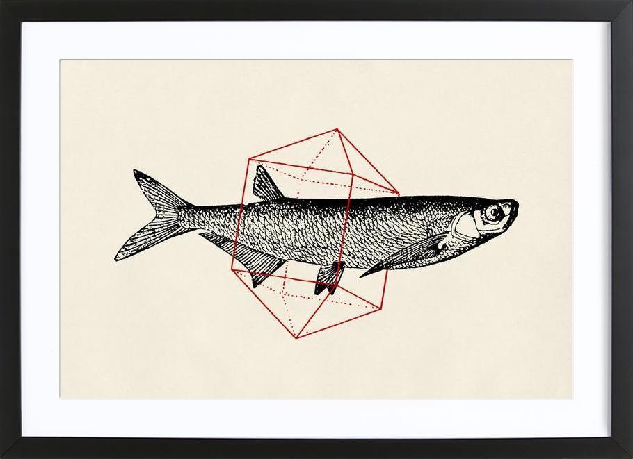 Fish in Geometrics II -Bild mit Holzrahmen