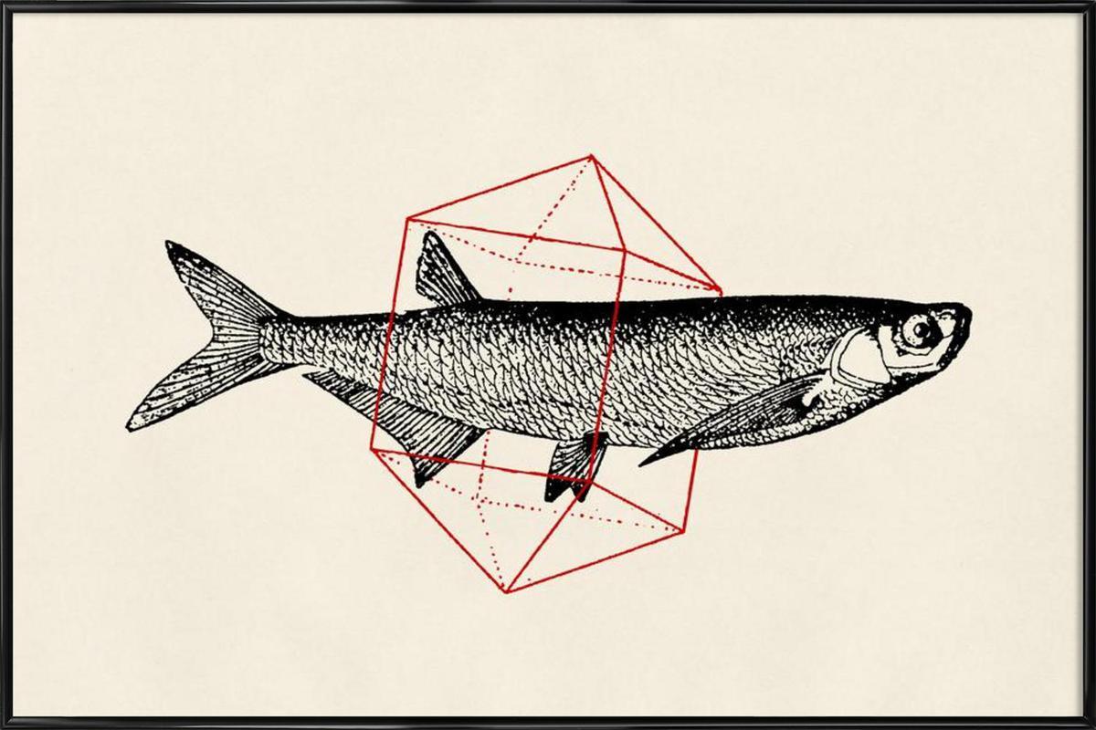 Fish in Geometrics II Framed Poster