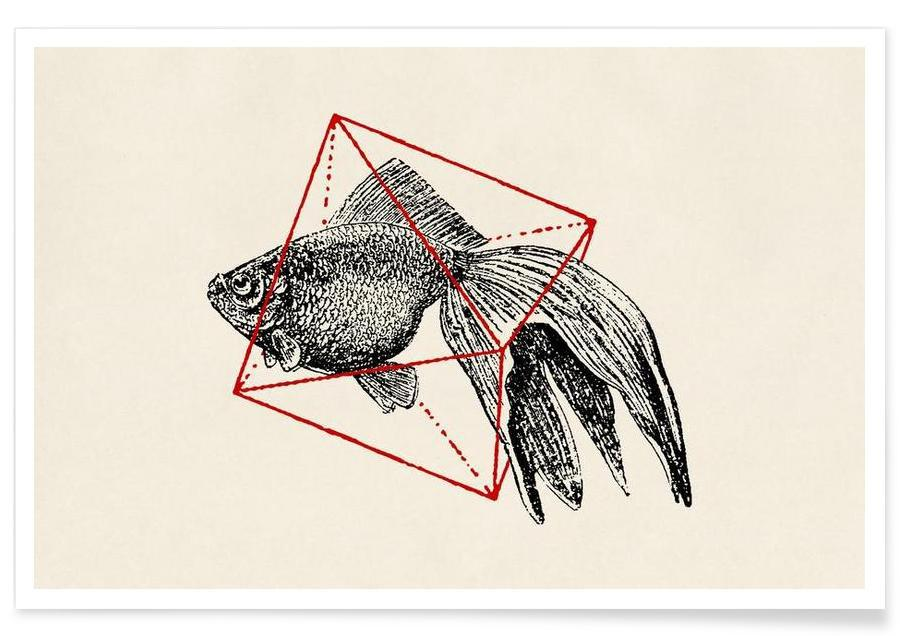 Fish in Geometrics III affiche