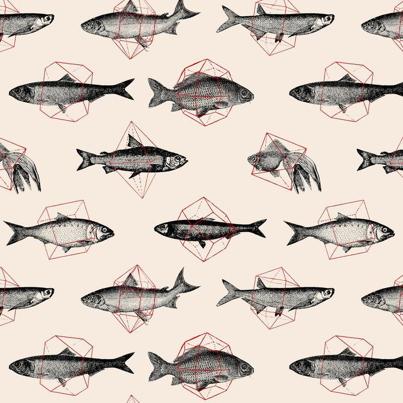 Fishes in Geometrics -Alubild