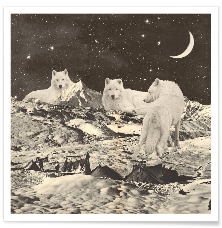 Art pour enfants, Loups, Rêve, White Wolves affiche