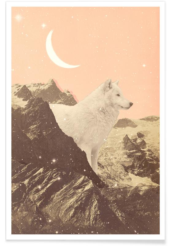 Montagnes, Giant White Wolf In Mountains affiche