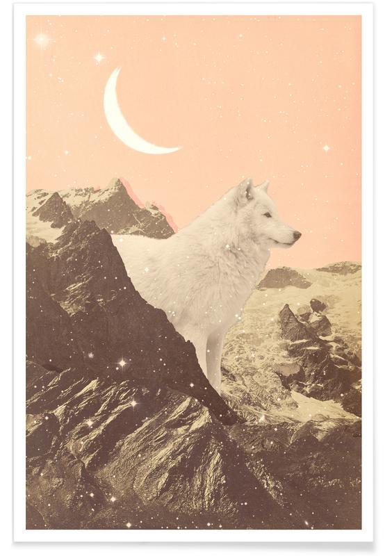 Mountains, Giant White Wolf In Mountains Poster