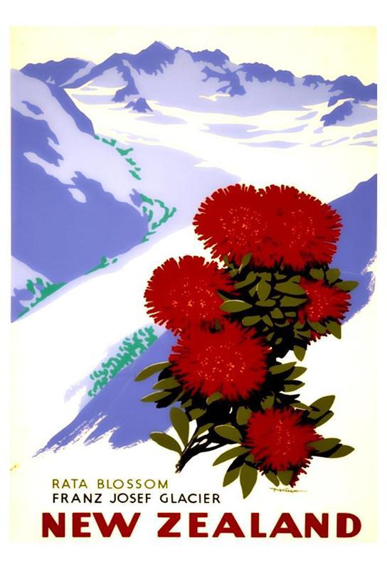 newzealand2 acrylglas print