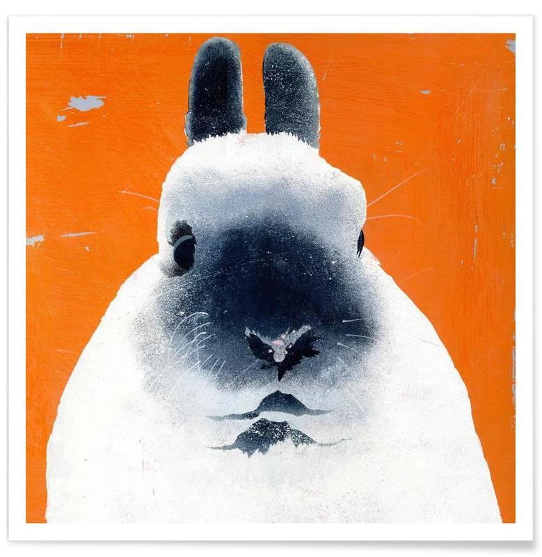 Lapins, Rabbit affiche