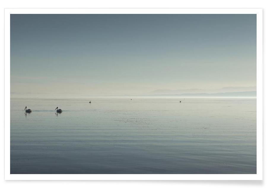 Océans, mers & lacs, The Salton Sea affiche