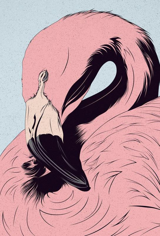 Flamingo alu dibond
