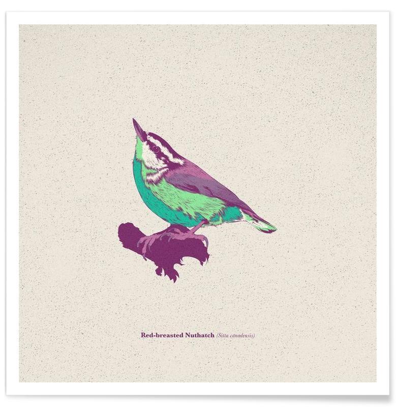 , Bird 01 affiche