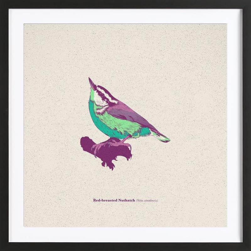 Bird 01 Framed Print