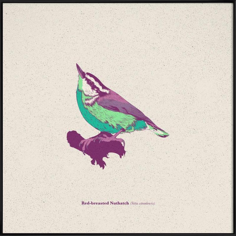 Bird 01 Framed Poster