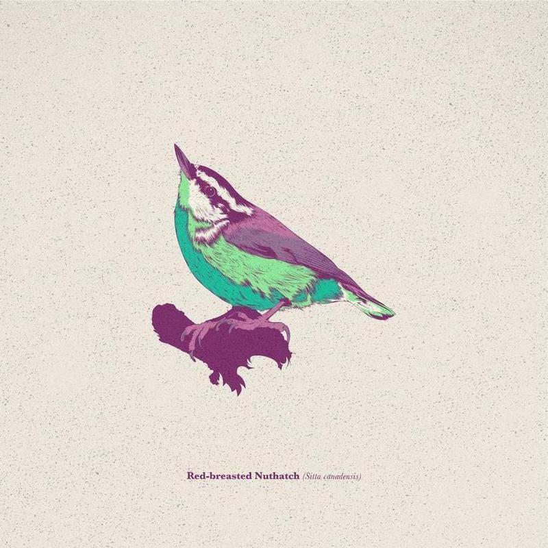 Bird 01 -Leinwandbild
