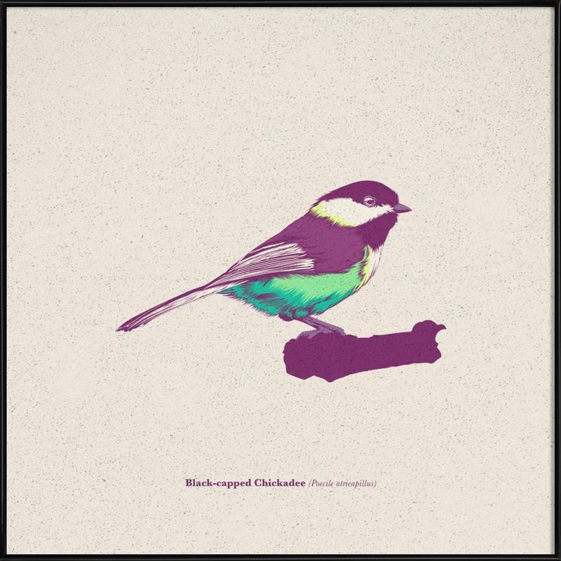 Bird 03 -Bild mit Kunststoffrahmen
