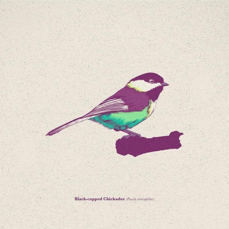 Bird 03 -Leinwandbild