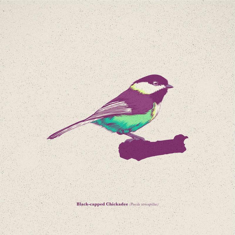 Bird 03 -Acrylglasbild