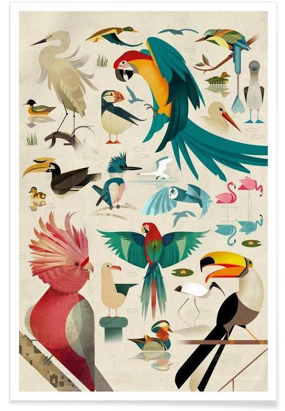 Art pour enfants, Oiseaux vintage affiche