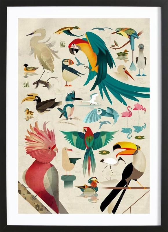 Birds ingelijste print
