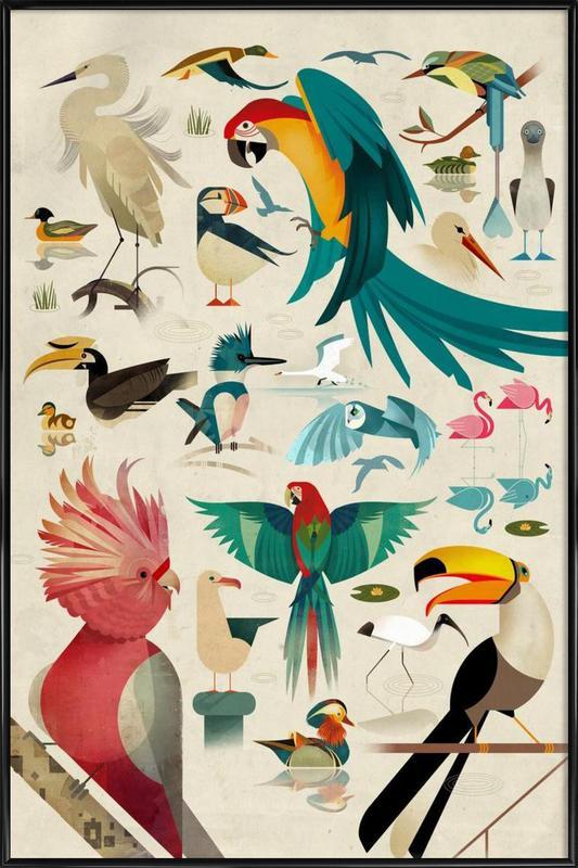 Birds poster con cornice