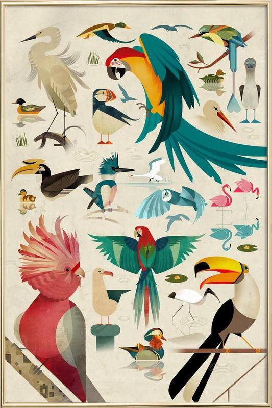 Birds poster in aluminium lijst