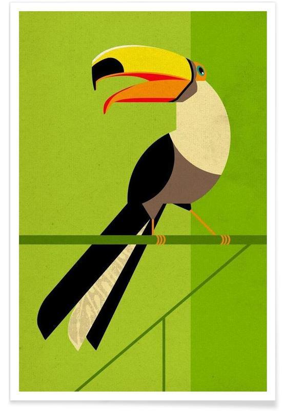 Rétro, Toucans, Toucan vintage affiche