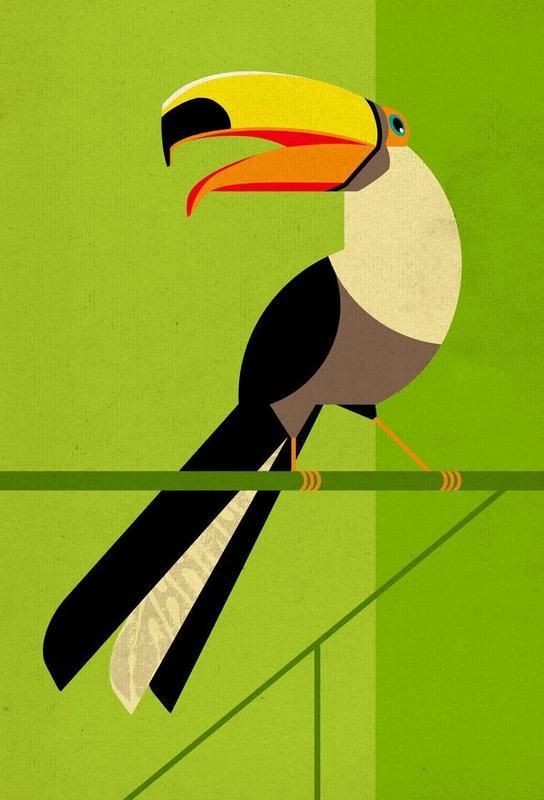 Toucan -Acrylglasbild