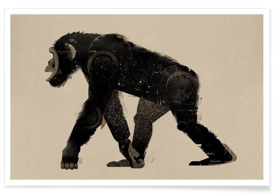 Singes, Chimpanzé vintage affiche