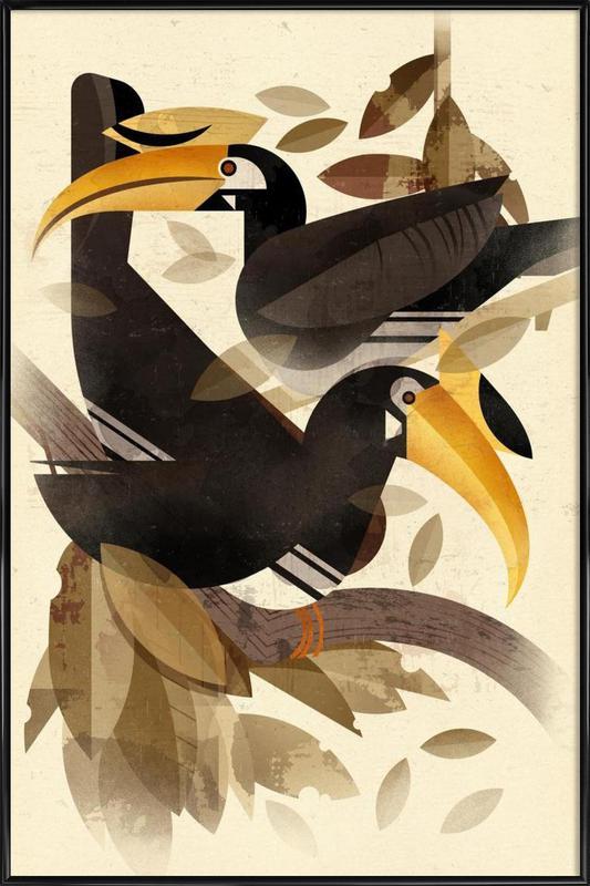 Hornbill Framed Poster