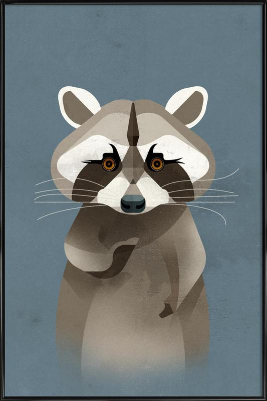 Racoon Framed Poster