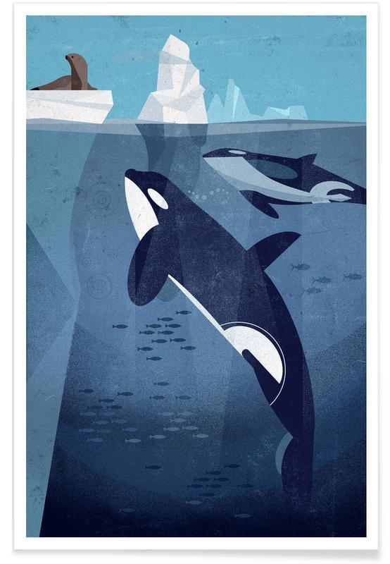 Vintage orka poster