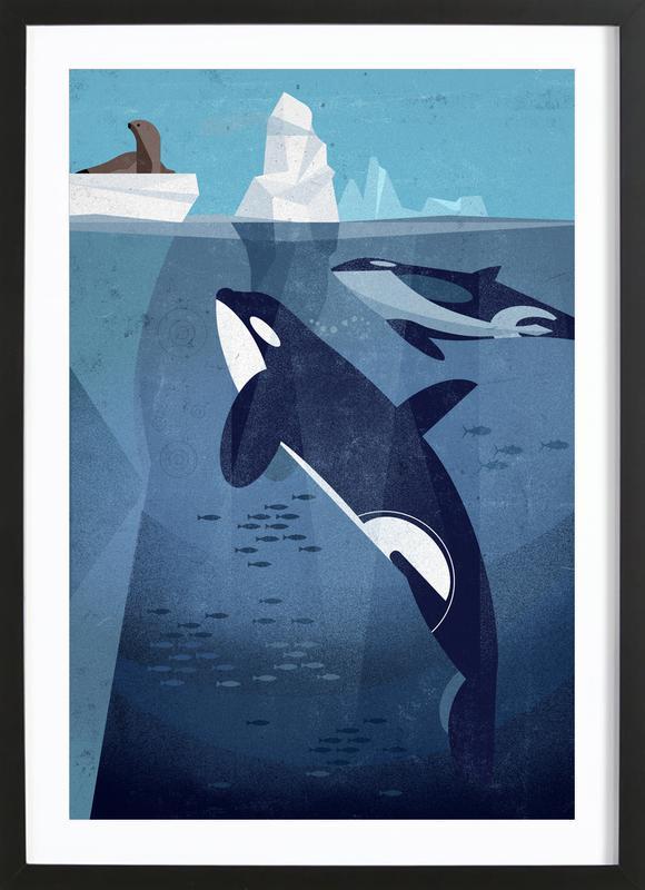 Orca -Bild mit Holzrahmen