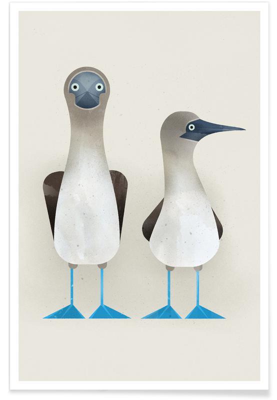 Art pour enfants, Blue Footed Boobies affiche