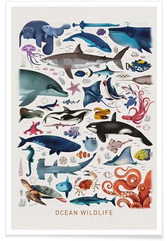 Kinderzimmer & Kunst für Kinder, Ocean Wildlife -Poster