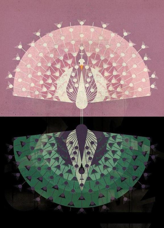 Peacock -Leinwandbild