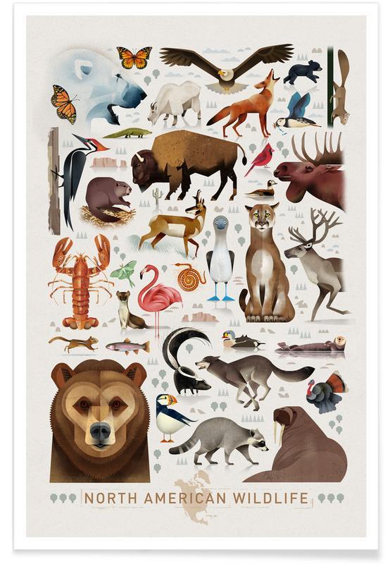 Art pour enfants, North American Wildlife affiche