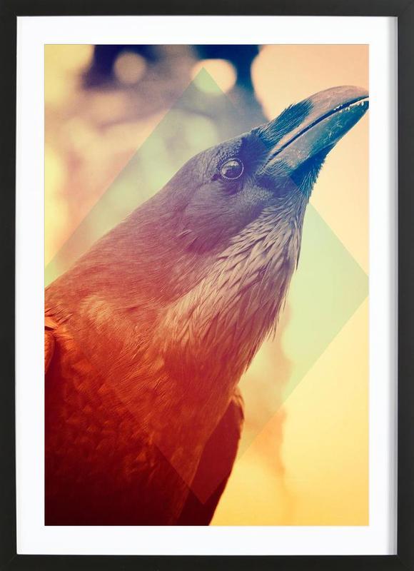 Crow ingelijste print
