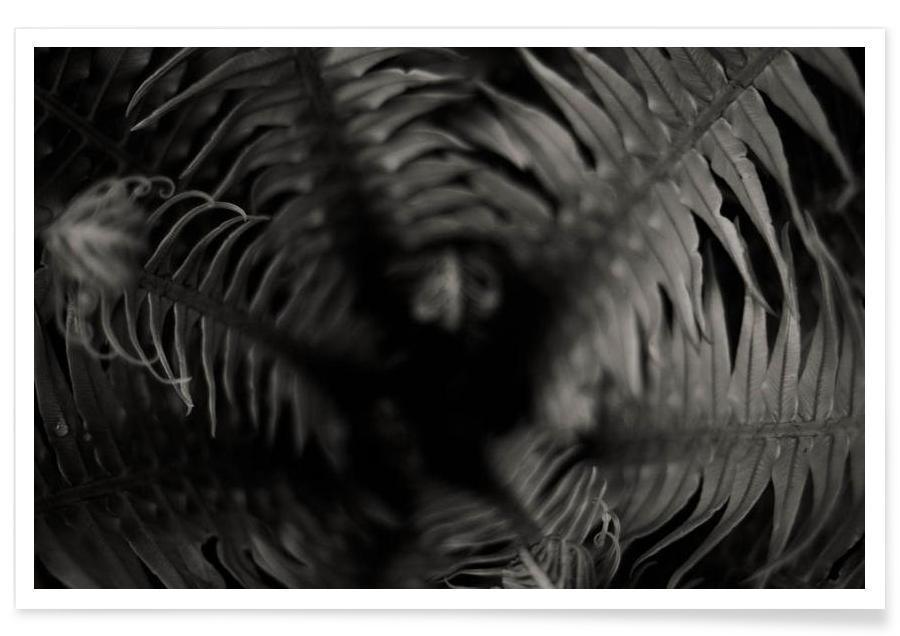 Blätter & Pflanzen, Tropical -Poster