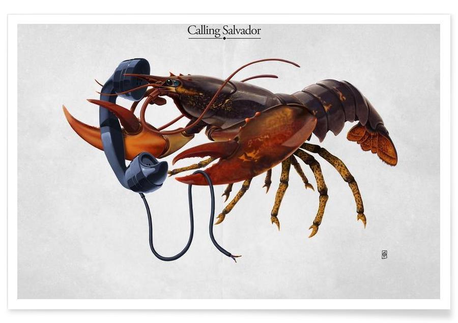 , Calling Salvador (titled) affiche