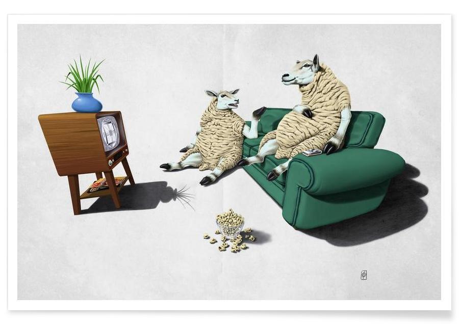 Sheep affiche