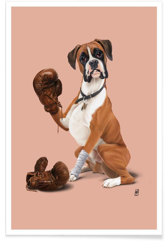 Dogs, The Boxer (Colour) Poster