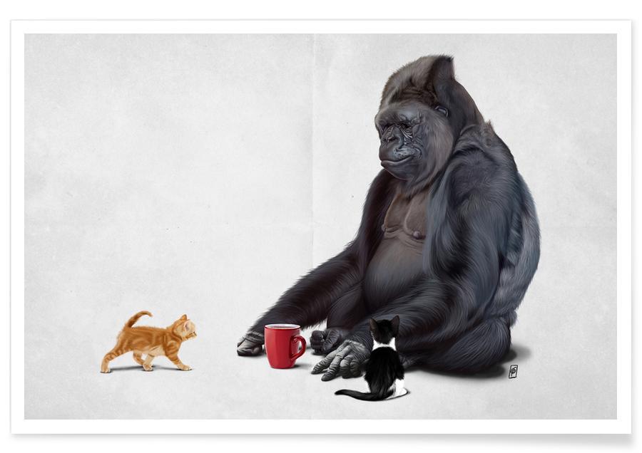 Affen, I Should Koko -Poster