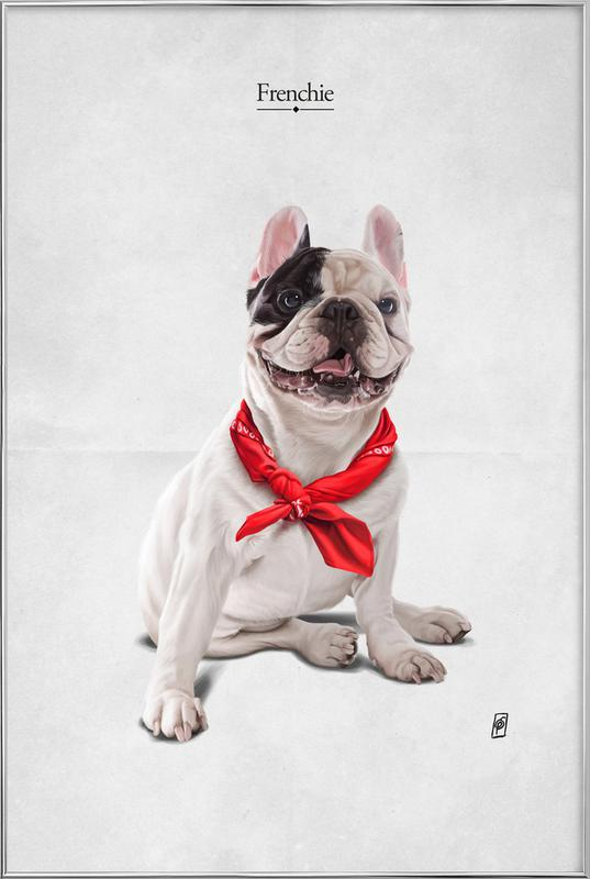 Frenchie Poster in Aluminium Frame
