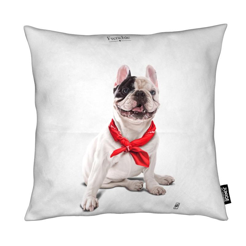 Chiens, Humour, Frenchie coussin