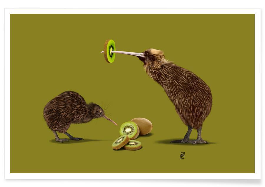 , Kiwi Poster