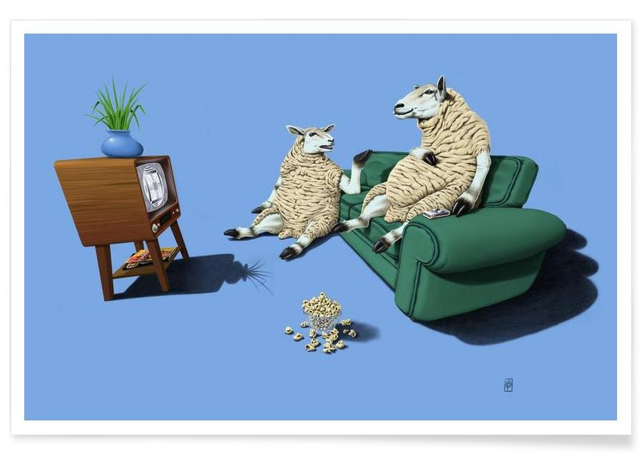 Sheep (colored) affiche