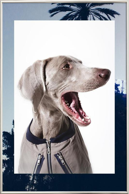 The Tailwaggers 6-3 poster in aluminium lijst
