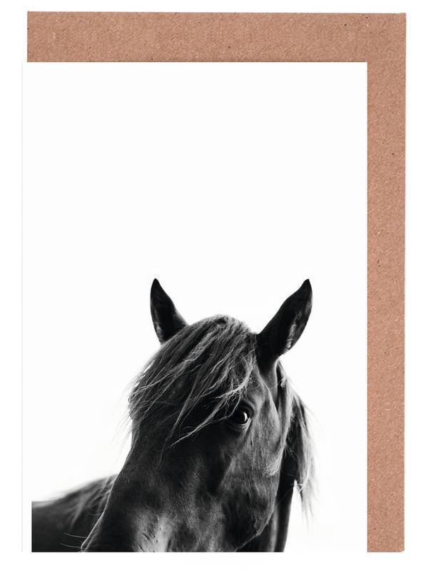 Schwarz & Weiß, Pferde, Black Beauty -Grußkarten-Set