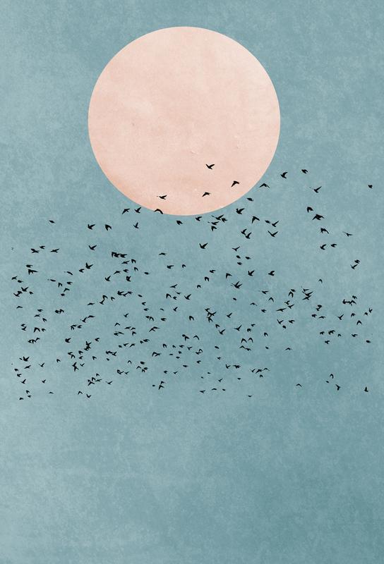 Fly Away -Alubild