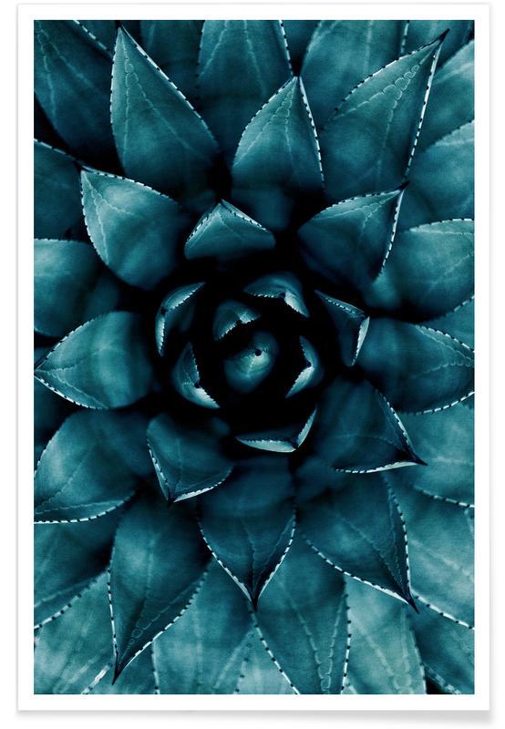 Cactus No.9 Poster