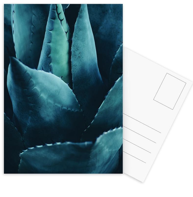 Cactus No.4 -Postkartenset